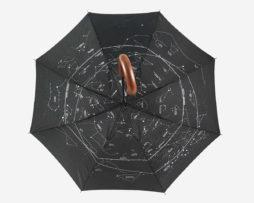 Зонт Levenhuk Star Sky Z10