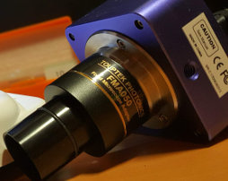 Цифровые камеры для микроскопов