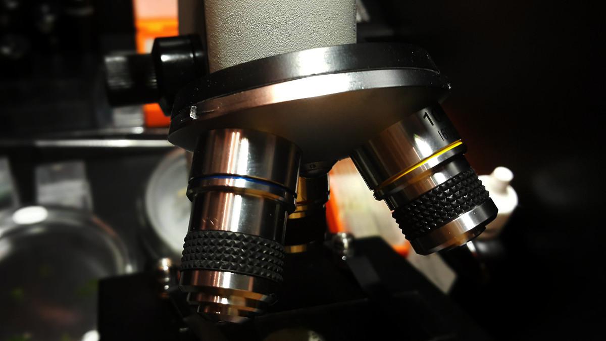 Обзор микроскопа Микромед С-12