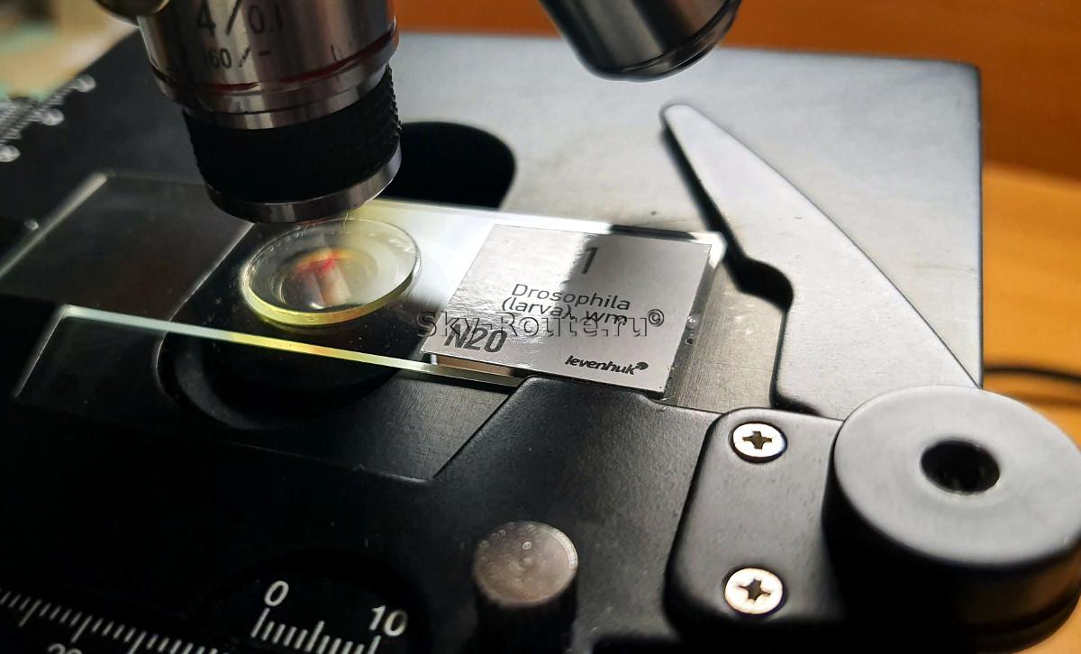 купить микроскоп в спб
